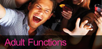 Adult Private Functions Disco - Birthday Party, Anniversary, Christmas, New Year, Christening, Bar Bat Mitzvah